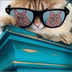 Pop Art Cat Sunglasses